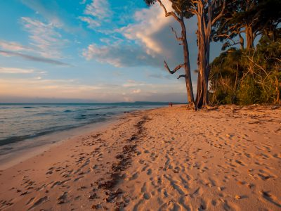 best of andman tour honeymoon and family tour